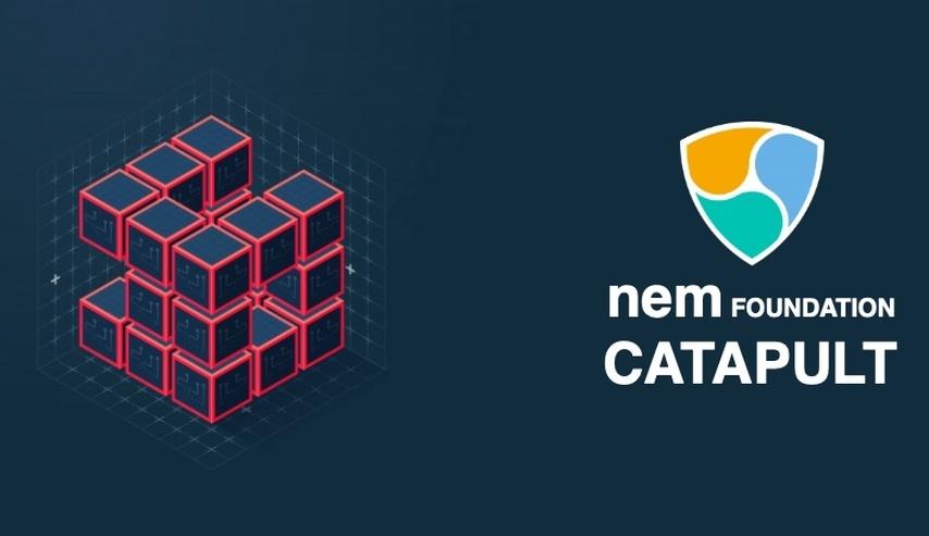 Certificación oficial NEM Catapult (Precio: 270€)