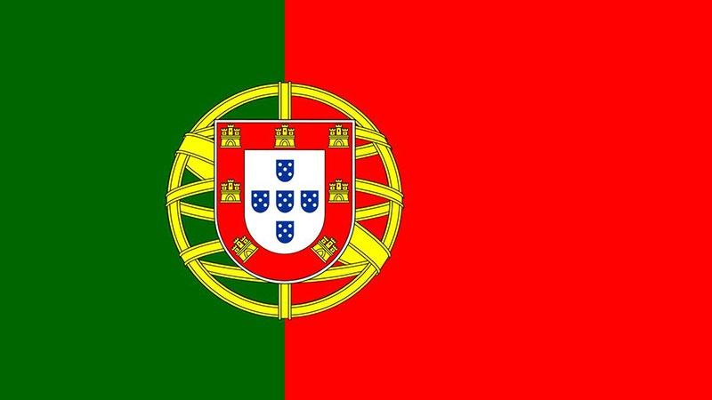 Portugués A1 (Precio: 49€)