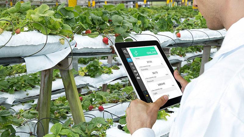 Siembra Directa: agricultura productiva sustentable – Universidad Nacional de Córdoba (Precio: 445,50 USD)