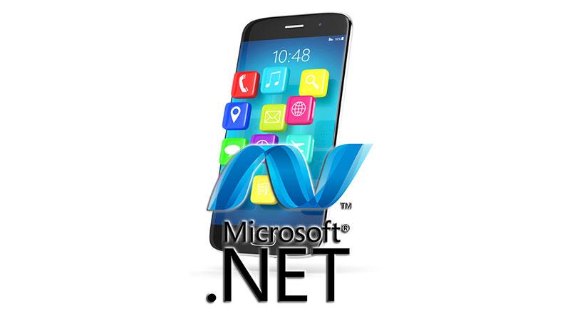 Desarrollo de aplicaciones .NET (Precio: 49€)