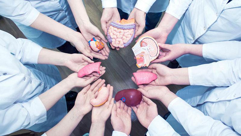 MOOC UAM – Trasplante de órganos: desafíos éticos y jurídicos